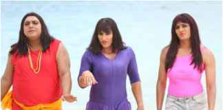 A still from Humshakals