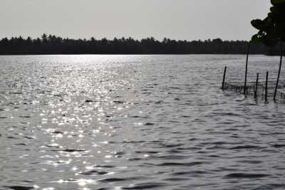 Backwaters beauty