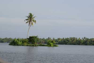 Green, glassy backwaters of Kerala