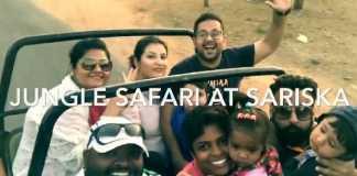 Jungle safari at Sariska Tiger Reserve