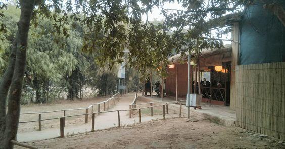 Roots – Café In The Park
