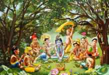 How to organize Janmashtami in Society