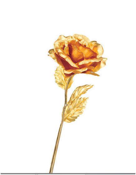 Golden Plated Rose